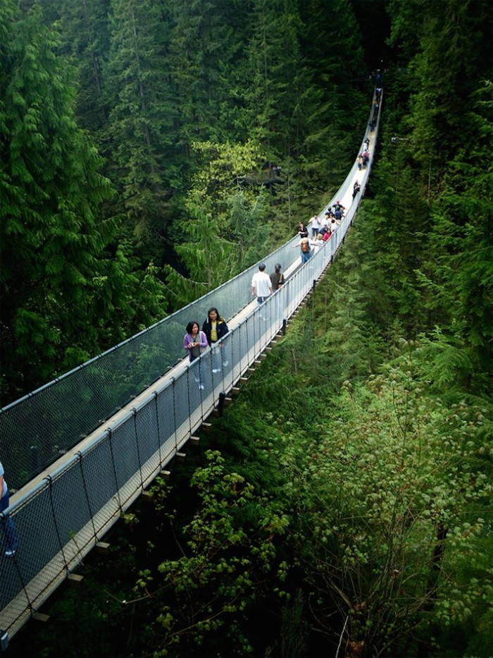 Capilano-Bridge-wcth05