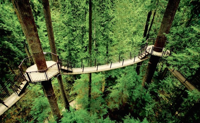 Capilano-Bridge-wcth12-640x392